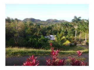 Haciendas Del Dorado 4hab-2baños $179k