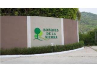 BOSQUE DE LA SIERRA/ REPO!!787-904-2335