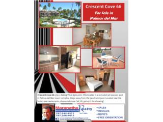 CRESCENT COVE 66-PALMAS DEL MAR