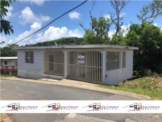 Barrio Beatriz Sector Muños Grillo Caguas