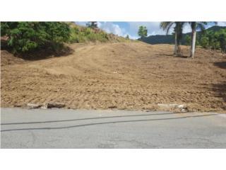 Finca de 8.9 cuerdas en Quebrada Prieta