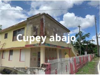 BARRIO CUPEY BAJO