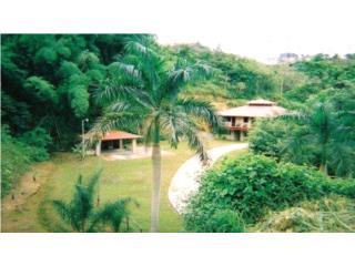 Bella Casa de Campo en Villa Sauceo