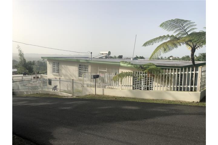 Vereda Puerto Rico