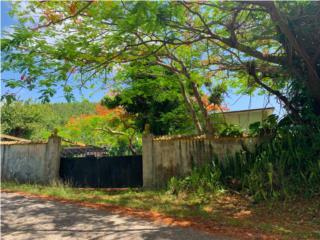 10 cuerdas terreno Bo. Palmas Altas, Guayama