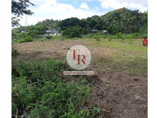 FOR SALE! Excelente terreno en GUAYNABO!