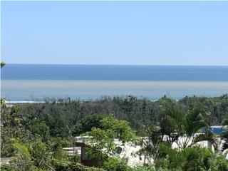 Bella vista a la Playa Peñon Brusi, Camuy