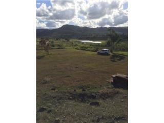 Espectacular terreno en Caguas !!!!!
