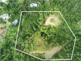 Terreno en Sector bo Nuevo Bayamon