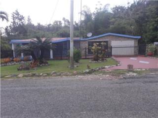 Casa 4-2, Bo. Bauta Abajo, La Francia, Orocovis
