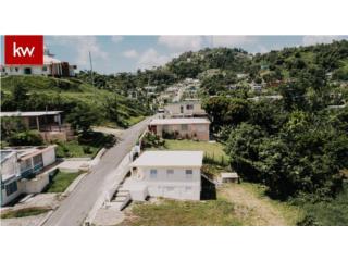 RIO BLANCO, CASA EN NAGUABO