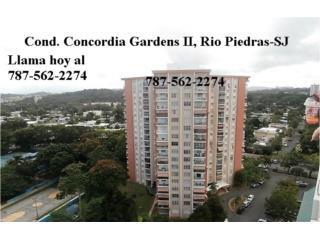 CONCORDIA GARDENS II *PISO  17