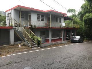 Carr 611 km 1.4 Bo. Sabana Grande Utuado P.R.