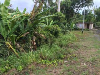 Terreno en Unibón, Morovis