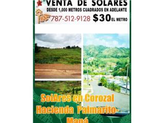 Solares  COROZAL  URB. Hcda Palmarito carr 802