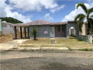 Valles de Patillas, Patillas