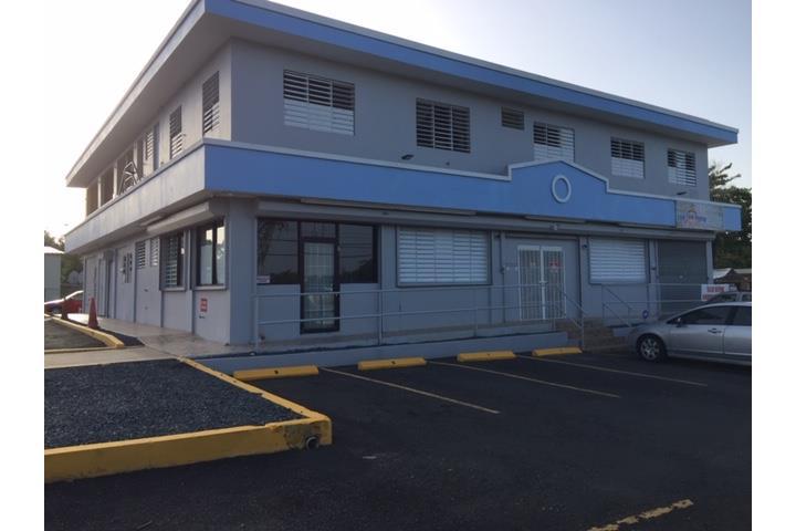 Camuy Arriba Puerto Rico