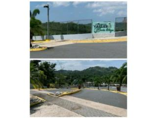 VALLES DE SANTA OLAYA//REPO!!! 787-904-2335