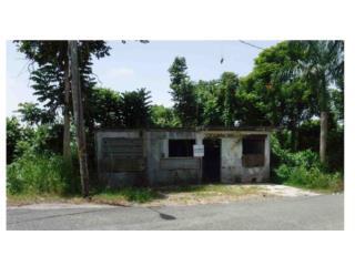 Solar Barrio Perchas San Sebastian en PR-443
