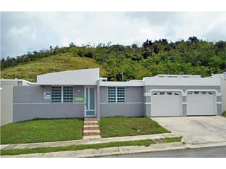 Paseo de la Ceiba- Control Acceso-PV $105,000