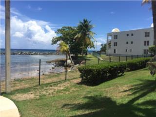Ocean Villas Dorado
