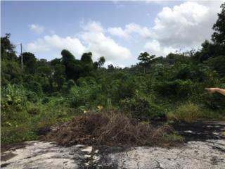 Lomas Jaguas, Naranjito | Terreno