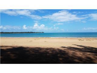 Yunquemar @Walking distance to the Beach