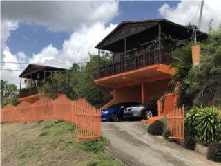 Carr. 155 KM 3.0 (Villa ParaisoII) Coamo PR