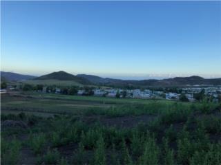 Bo. LLanos-Solar 3,073 Metros-Vista Panoramic