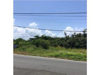 Solar frente a la carretera 681.