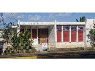 Pueblo Ward / Guayama