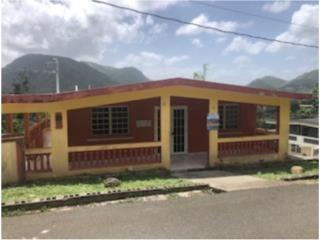 173 La Palta Ward Aibonito, PR, 00705