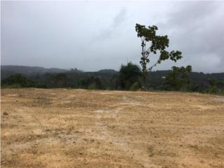 Haciendas del Dorado completamente llano.