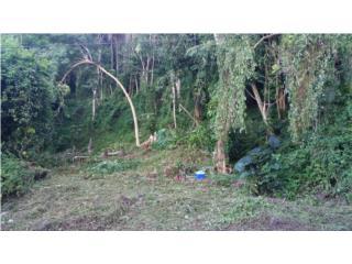 Solar en Lomas del Sol, Guaynabo -
