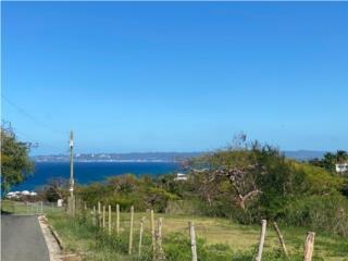 Prime Location with Ocean Views in Bo. Puntas