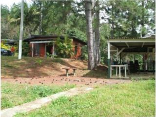 Terrenos / Land for sale in Guavate