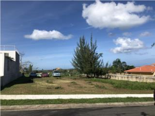 Terreno para Residencia en Alturas de Cerro Gordo