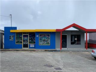 Ave Principal Bo Quebrada Cruz