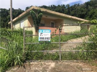 Urb. Colinas del Yunque / 3-2