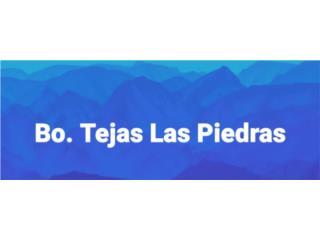 Bo. Tejas Las Piedras, PR