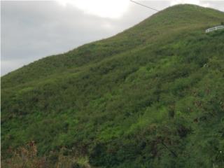 Finca de 5 cuerdas area Coamo (Vista al Mar)