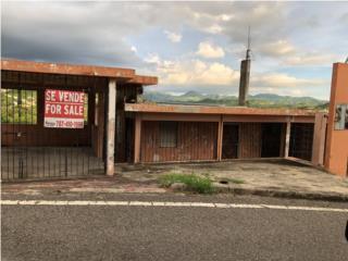 Ruiz Belvis 136 Norte Coamo PR--Inversion--