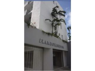 RIO PIEDRAS, Flamboyanes 184 , Apratamento