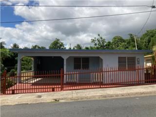 Bo. Borinquen, Caguas