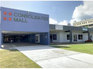 COMMERCIAL SPACE IN MALL, CAGUAS