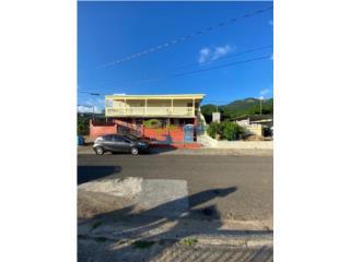 EDIFICIO COMERCIAL EN OLIMPO GUAYAMA