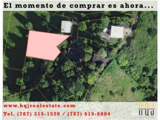 PR 400 km 1.3 int. Bo. Rio Grande,Rincon