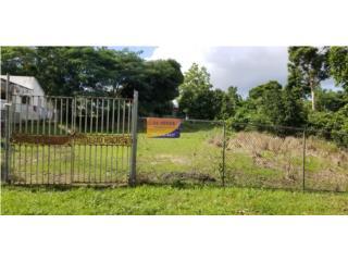 Bo. Ceiba Norte, Comunidad Santana