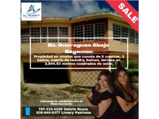 NEW on Market!!! Bo. Guaraguao Abajo