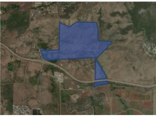 414.62 Cuerdas Vacant Land For Sale
